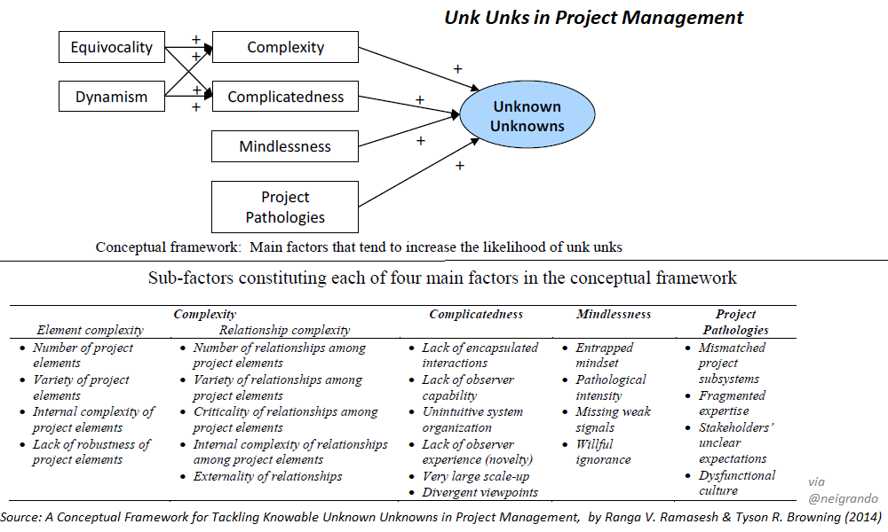 Unk Unks in Project Management