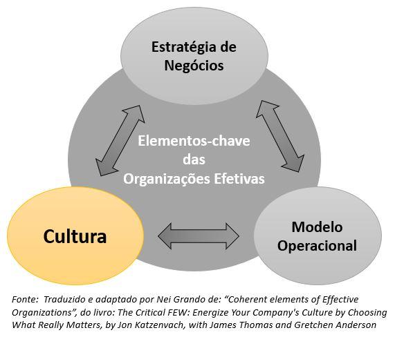 Elementos-chave das Organizações Efetivas